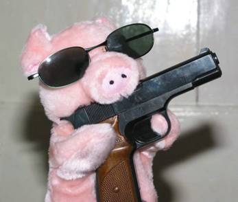 pig with gun