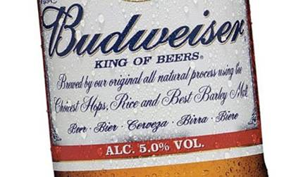 did you know that budweiser is german for shitty bear