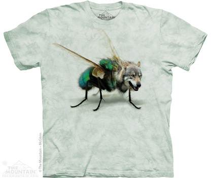 wolf fly