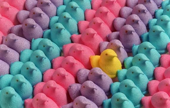 Image result for peeps marshmallow