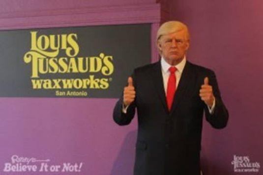 wax trump
