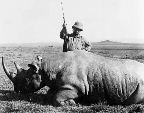 teddy roosevelt hunting